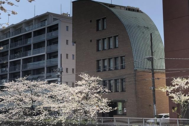 桜のきれいな目黒川に面したデザインチックな校舎です